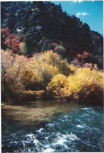 photo of river in a canyon