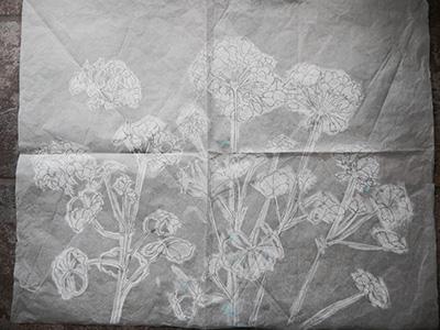 Sketch for geraniums using geometric grid
